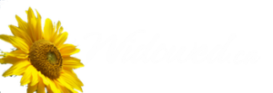 Sunflower Logo from Widowed.ca