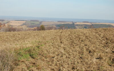 Considering a Rural Property?